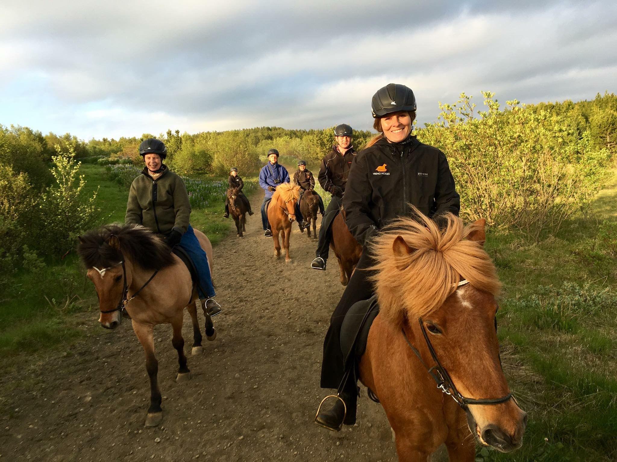 Riding Club Viking Horses